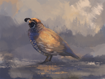 Californian Quail Speedpaint by Kieath