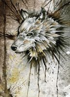 Wolf Head by Jay-Allen-Hansen