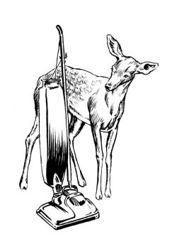 Doe and Vacuum by mlauritano