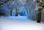 a snowy day in somerset two by myworld247