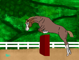 Texas the Show Jumper by Abugbeary