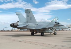 Rattler 202 in subdued marks by F16CrewChief