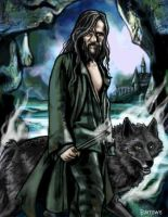 Sirius Black by Fumik0