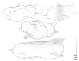 My personal busty blimp airline concept_ n progres by wsache007