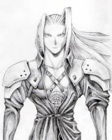SEPHIROTH by power-junky