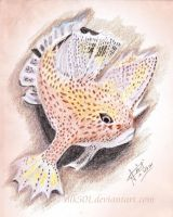 EAP July : Spotted handfish by silk501