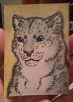 ACEO Example by CottinFurr