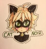 Cat Noir Fan Art!  by EvilCrayonsOfDoom