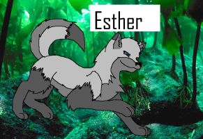 Esther by aquaheartthecat