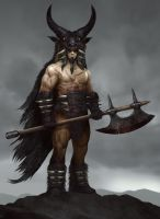 Barbarian Lord by QuinnSimoes