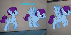 My little pony : Blauscout by Kagoshine
