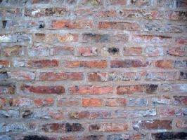 Brick Wall by pendlestock