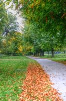 Autumn Path by teslaextreme