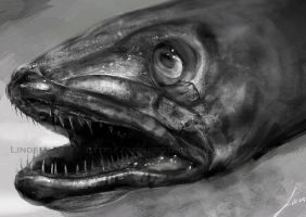 Study: Fish Head by TwoDD