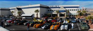 Shelby HQ by supercrazzy