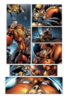 Wolverine vs Juggernaught by JPR04