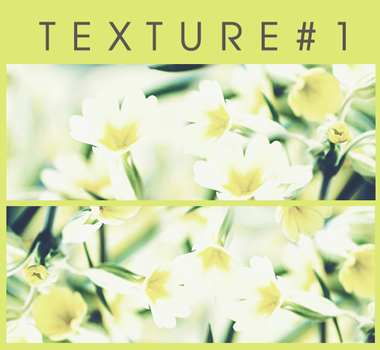 Texture Pack #1 By Ri by phuonganh179