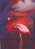 Flamant rose by Ofeliawren