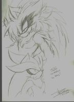 Silver and Silver Sketch by Mimy92Sonadow