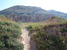 old goat trail by jahendrick