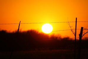 Sunset Series - Fenced In 1 by JPDingman