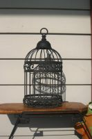 Bird Cage 2 by cstarr-stock