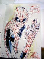 Spidey by JimMahfood-FoodOne