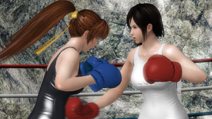 Kokoro Vs. Phase 4 Boxing by Speedhedgehog32
