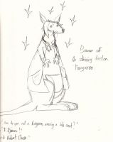 THE WOMBAT IS A KANGAROO by Lilium32