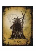 Oak king by clv