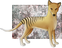 Tasmanian Tiger by Ruaya