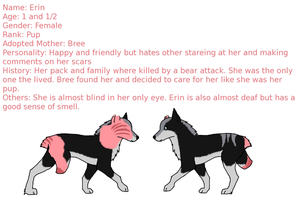 Erin simple ref by WithoutRegretx