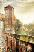 Wawel Castle Tower by maxbreak