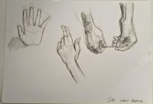 daily hand practice (30/30) by larissaschoeler