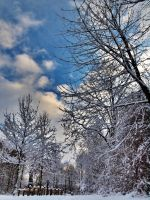 Dutch winter I by pagan-live-style