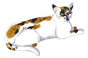 Bluefallstripe Calico by Lithestep
