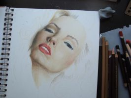 Colour pencil wip2 by stef-g