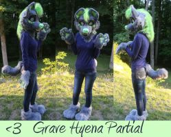 Grave Hyena Partial Commission by GoldenCat22