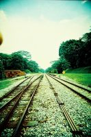 railroads by touristwithacamera