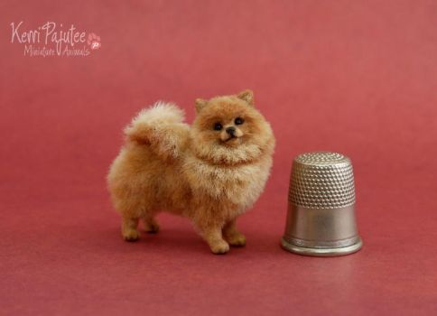 Miniature Red Pomeranian sculpture 2012 by Pajutee