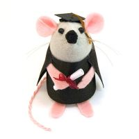 Graduate Mouse by The-House-of-Mouse