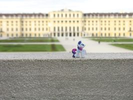 Rarity at Castle Schoenbrunn in Vienna (Austria) by CMC--Scootaloo