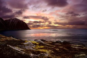 Pirates Bay by steinliland