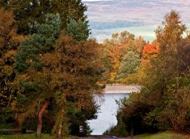 The Fall I by DundeePhotographics