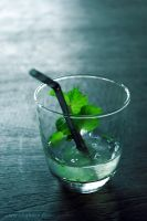Mint by shabasa
