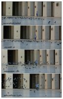 The Story with birds by mido4design