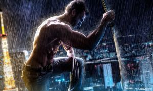 The Wolverine by SoLLLLLL