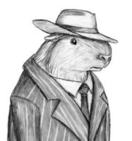 Guinea Gangster by squirrelborg