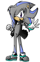 .:Jet The Hedgehog:. by XxRubytheRabbitxX