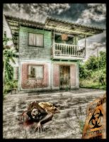 Some fun with HDR and the Garden Zombie by Drchristophers